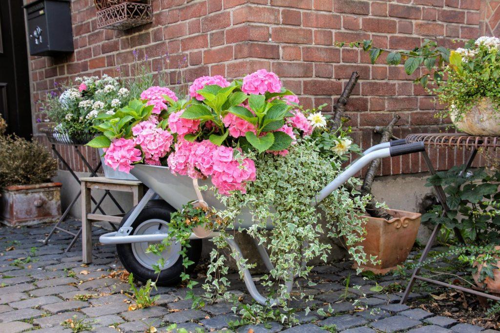 am nager son jardin avec des plantes et d co la d coration ma passion. Black Bedroom Furniture Sets. Home Design Ideas